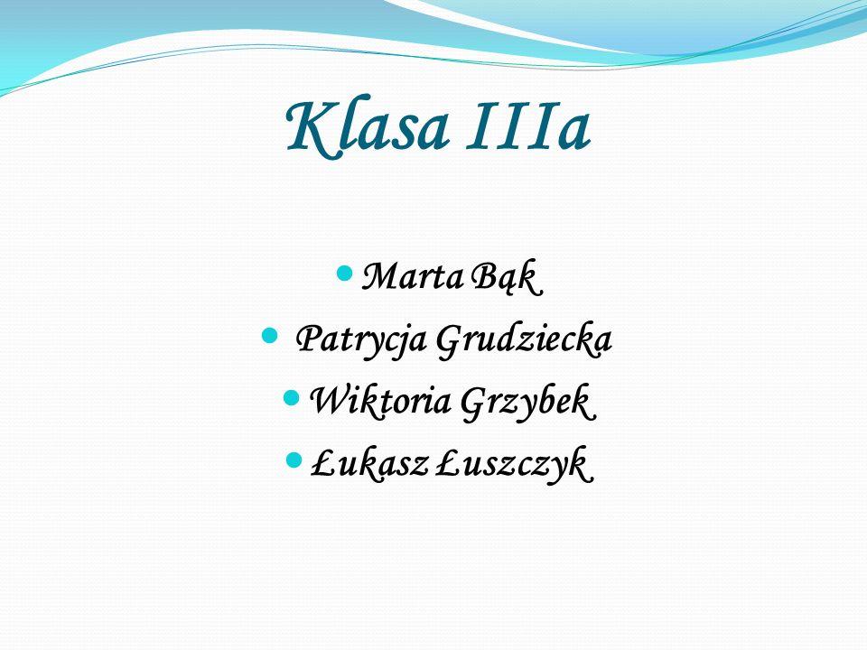 Klasa IIIa Marta Bąk Patrycja Grudziecka Wiktoria Grzybek Łukasz Łuszczyk