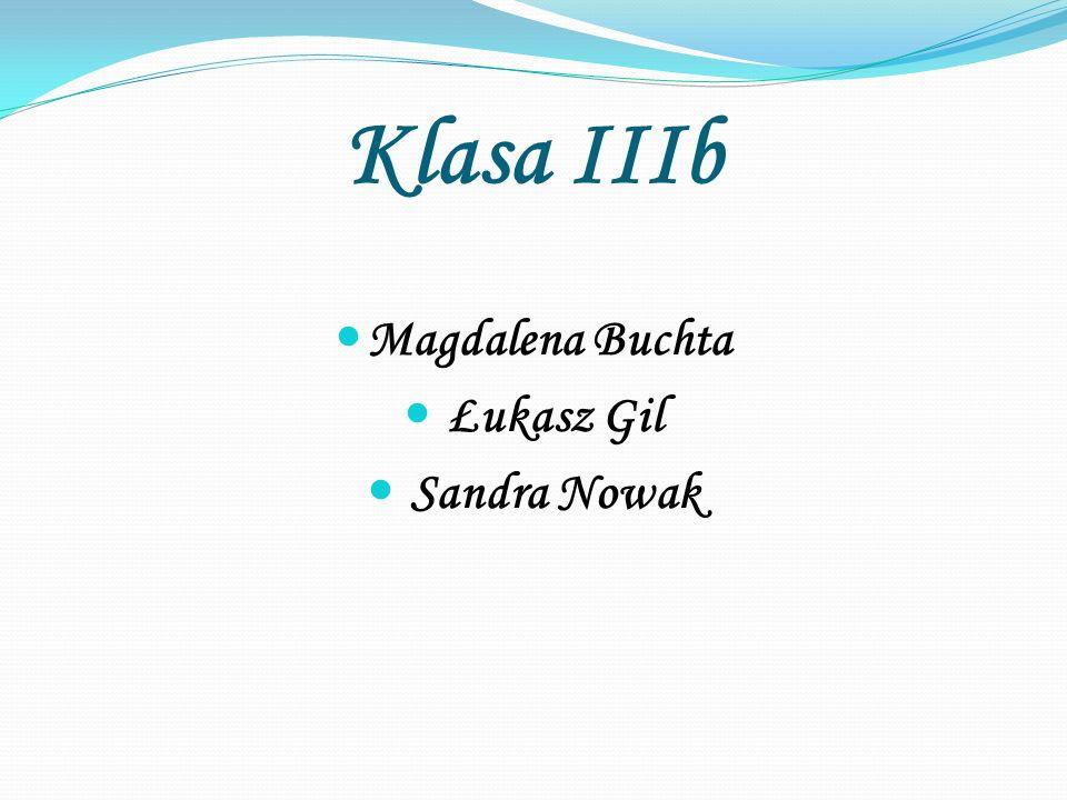 Klasa IIIb Magdalena Buchta Łukasz Gil Sandra Nowak