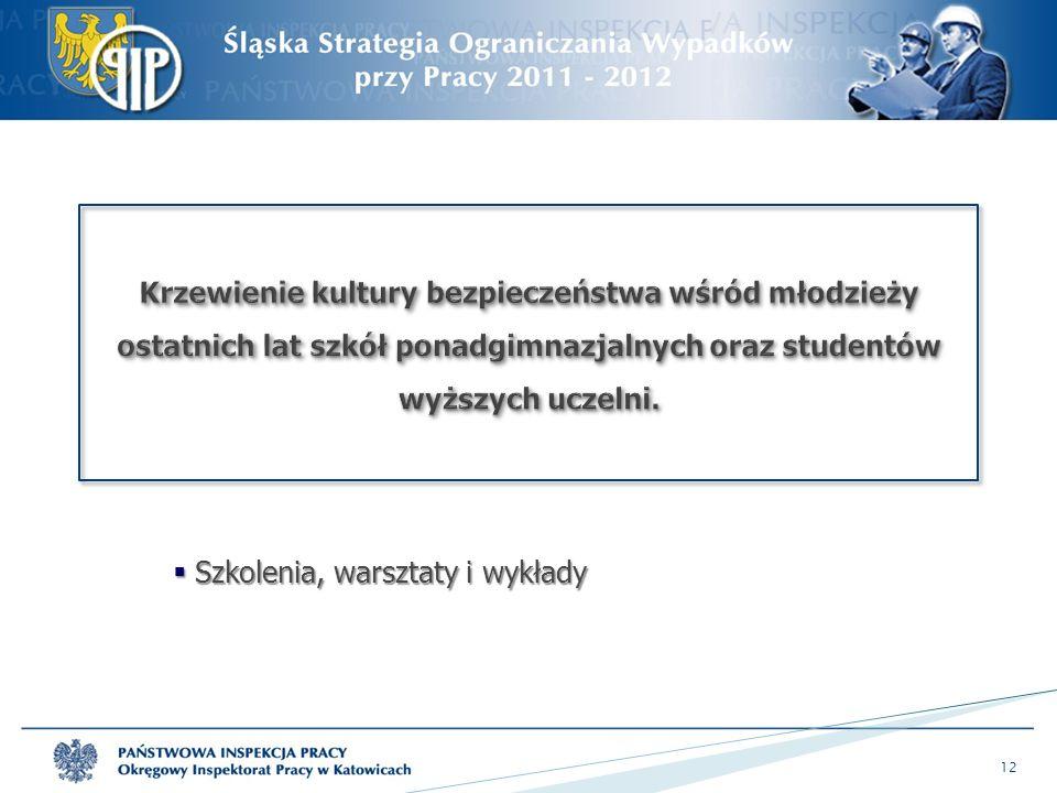  Szkolenia, warsztaty i wykłady 12