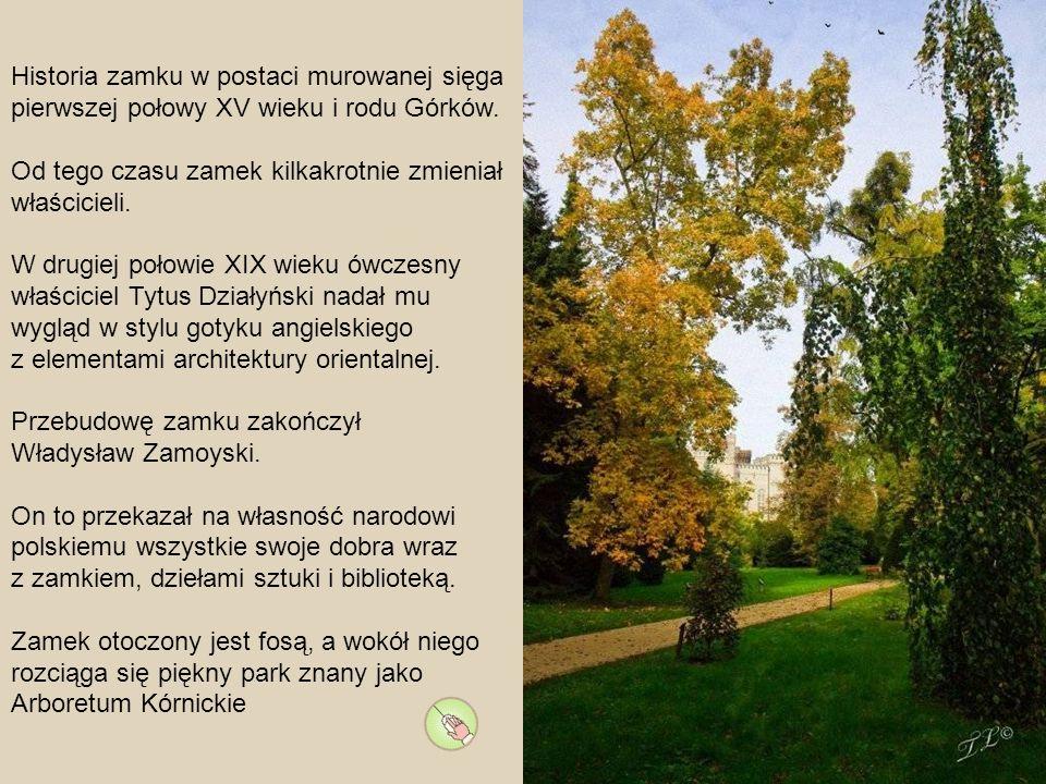 Historia zamku w postaci murowanej sięga pierwszej połowy XV wieku i rodu Górków.