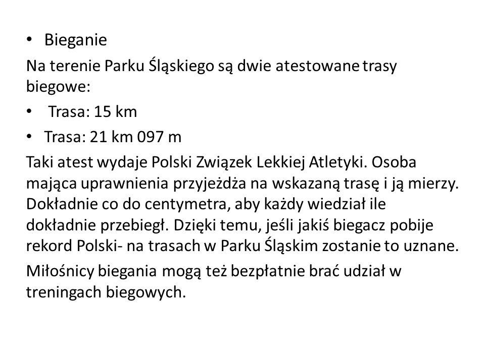 Bieganie Na terenie Parku Śląskiego są dwie atestowane trasy biegowe: Trasa: 15 km Trasa: 21 km 097 m Taki atest wydaje Polski Związek Lekkiej Atletyki.