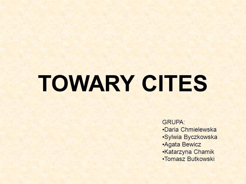TOWARY CITES GRUPA: Daria Chmielewska Sylwia Byczkowska Agata Bewicz Katarzyna Chamik Tomasz Butkowski