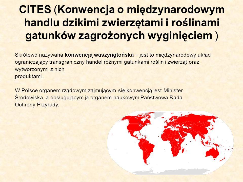 CITES (Konwencja o międzynarodowym handlu dzikimi zwierzętami i roślinami gatunków zagrożonych wyginięciem ) Skrótowo nazywana konwencją waszyngtońska – jest to międzynarodowy układ ograniczający transgraniczny handel różnymi gatunkami roślin i zwierząt oraz wytworzonymi z nich produktami.