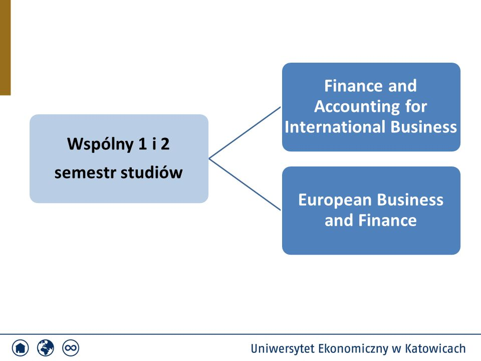 Wspólny 1 i 2 semestr studiów Finance and Accounting for International Business European Business and Finance