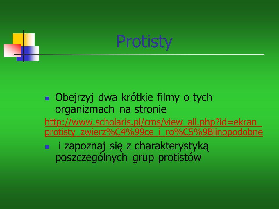 Obejrzyj dwa krótkie filmy o tych organizmach na stronie http://www.scholaris.pl/cms/view_all.php?id=ekran_ protisty_zwierz%C4%99ce_i_ro%C5%9Blinopodobne i zapoznaj się z charakterystyką poszczególnych grup protistów Protisty