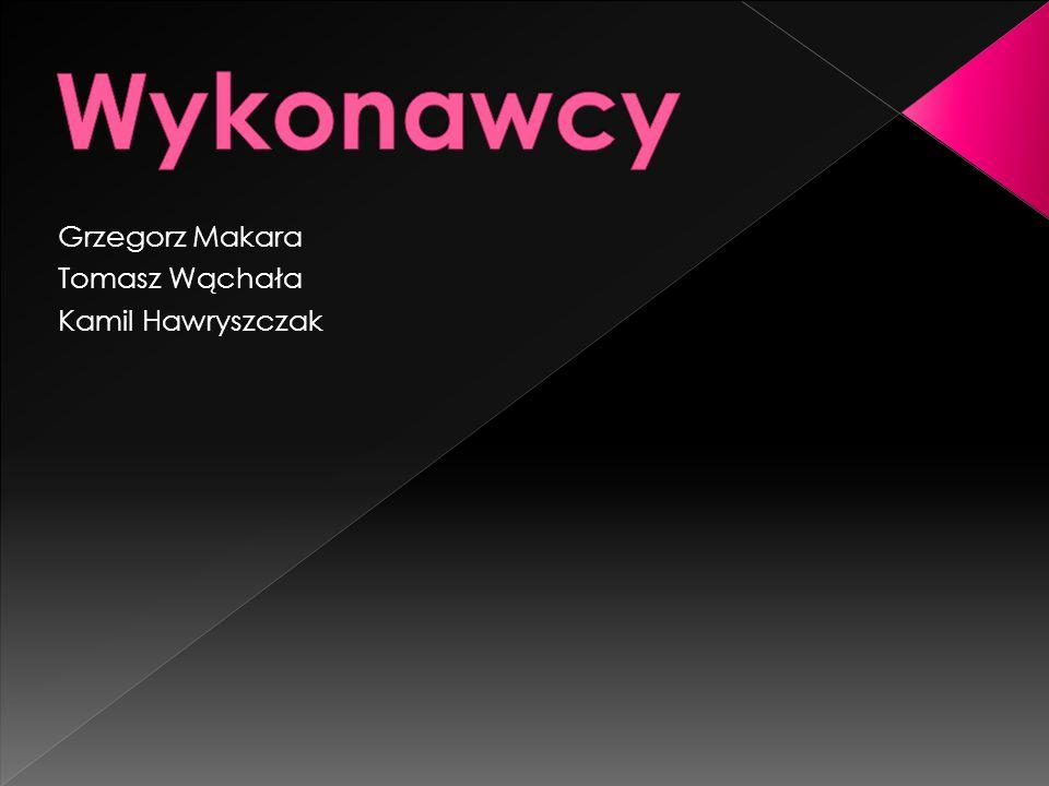 Grzegorz Makara Tomasz Wąchała Kamil Hawryszczak
