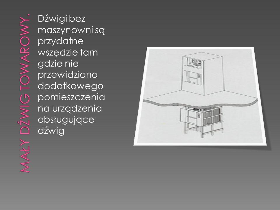 Dźwigi bez maszynowni są przydatne wszędzie tam gdzie nie przewidziano dodatkowego pomieszczenia na urządzenia obsługujące dźwig