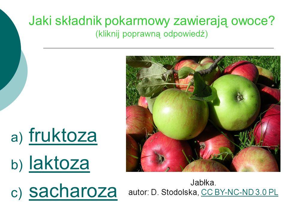 Jaki składnik pokarmowy zawierają owoce.
