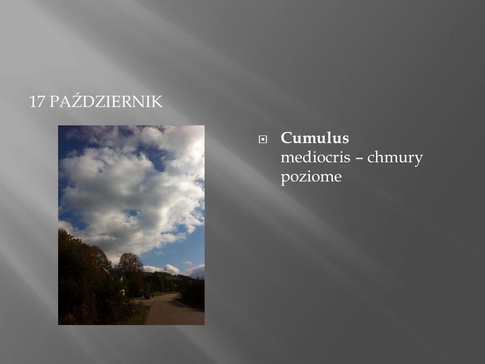 17 PAŹDZIERNIK  Cumulus mediocris – chmury poziome
