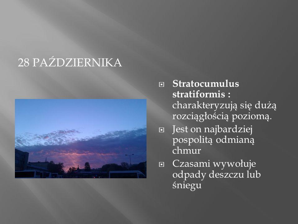 28 PAŹDZIERNIKA  Stratocumulus stratiformis : charakteryzują się dużą rozciągłością poziomą.