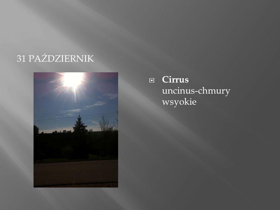 31 PAŹDZIERNIK  Cirrus uncinus-chmury wsyokie