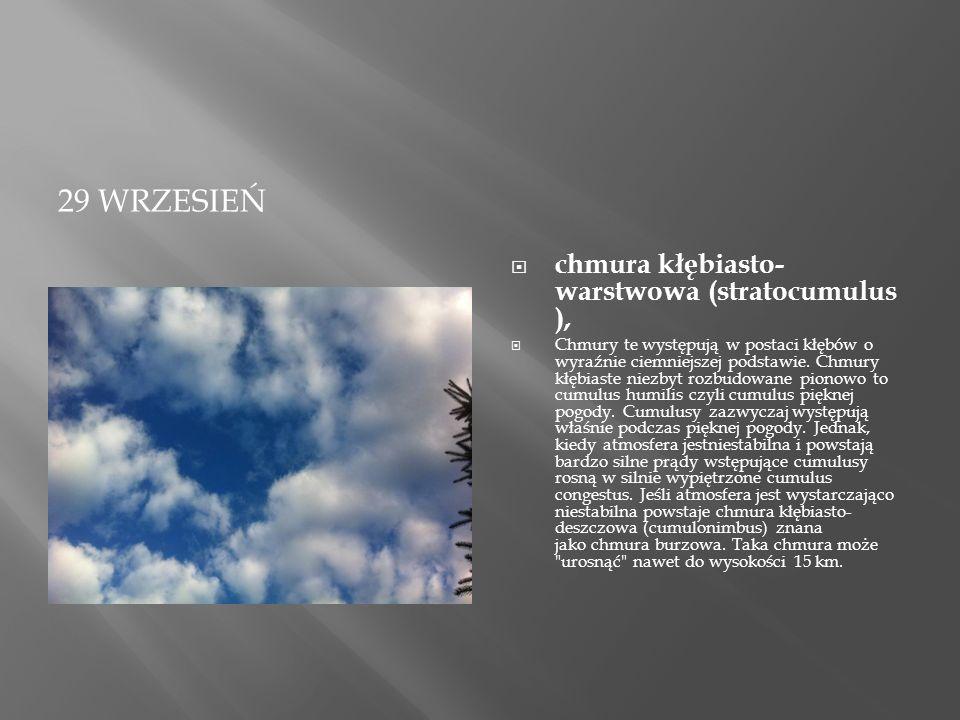29 WRZESIEŃ  chmura kłębiasto- warstwowa (stratocumulus ),  Chmury te występują w postaci kłębów o wyraźnie ciemniejszej podstawie.
