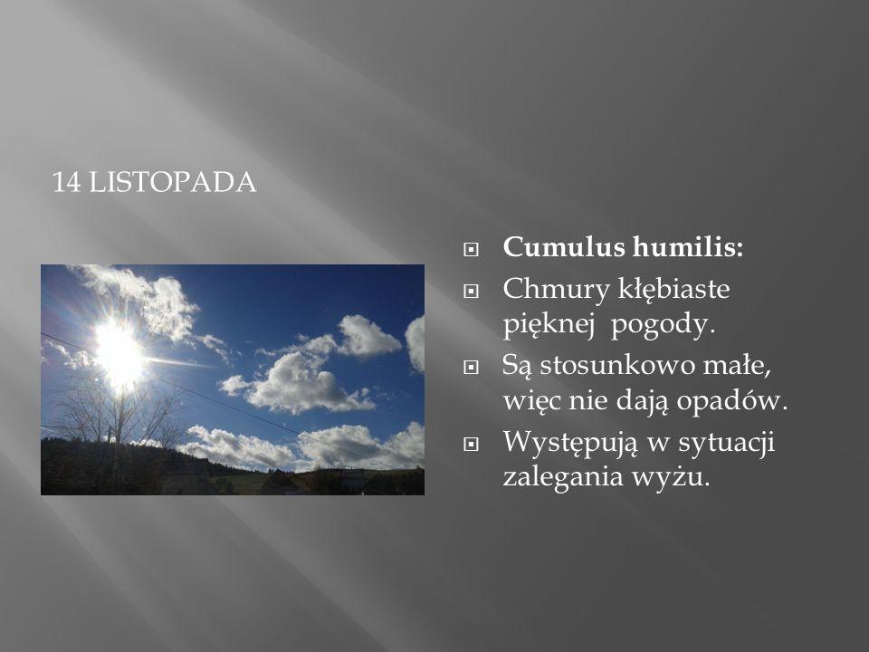 14 LISTOPADA  Cumulus humilis:  Chmury kłębiaste pięknej pogody.