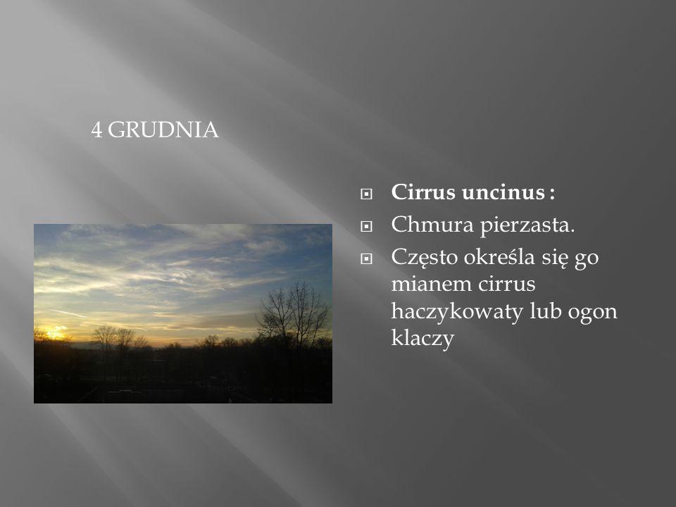 4 GRUDNIA  Cirrus uncinus :  Chmura pierzasta.