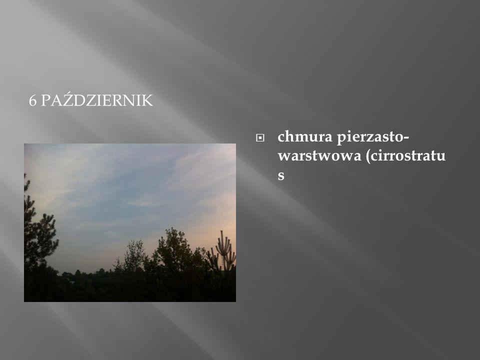 """29 PAŹDZIERNIKA  Stratocumulus stratiformis: """"kłębiaste warstwowe rozpostarte  Gatunek chmur Stratocumulus charakteryzujących się dużą rozciągłością."""