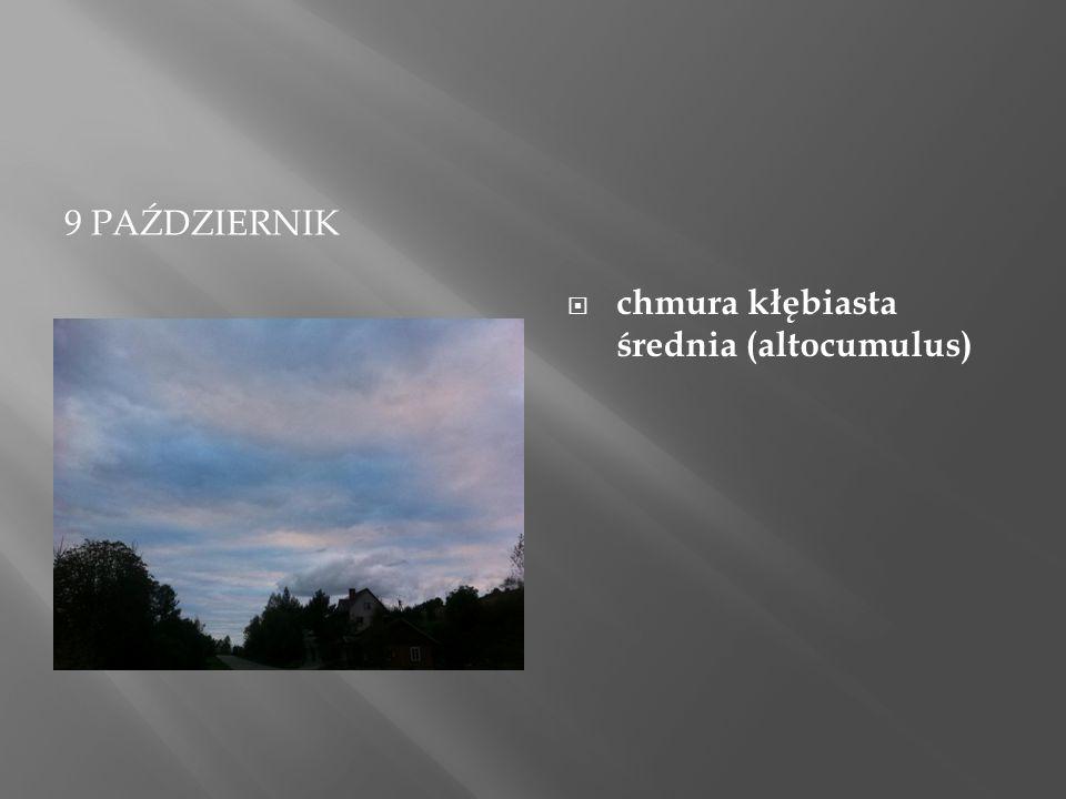 9 PAŹDZIERNIK  chmura kłębiasta średnia (altocumulus)