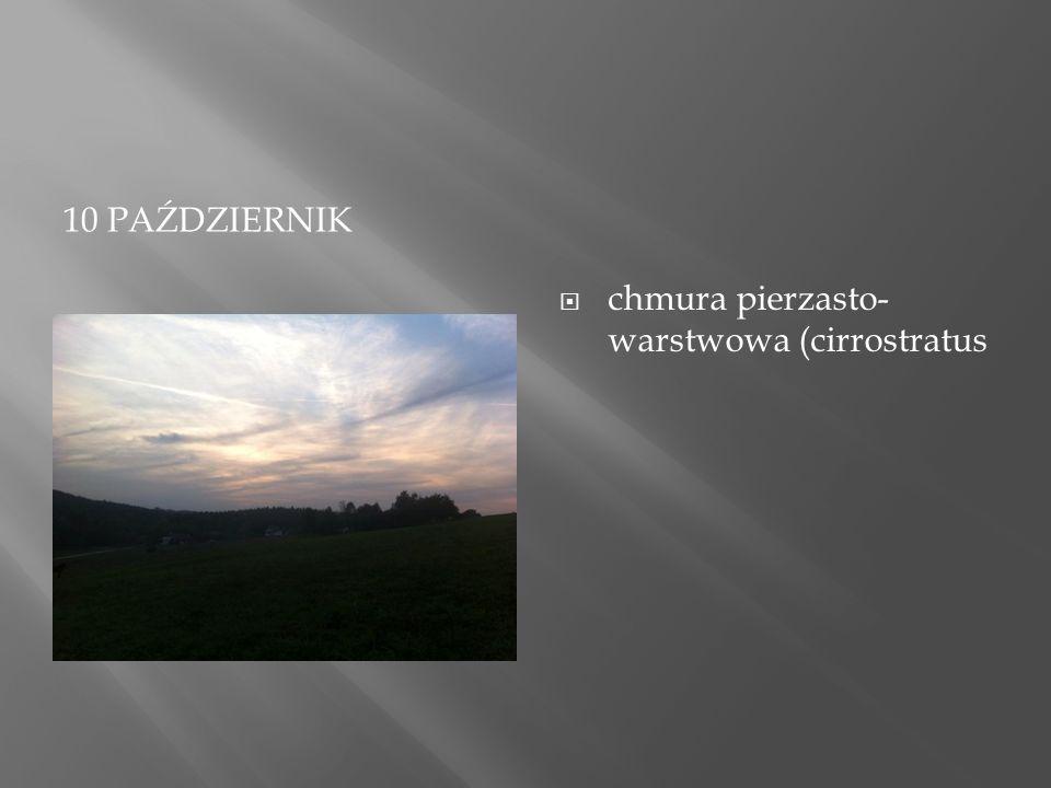 12 LISTOPADA  Cumulus mediocris :  Chmury kłębiaste o ograniczonej rozciągłości pionowej.