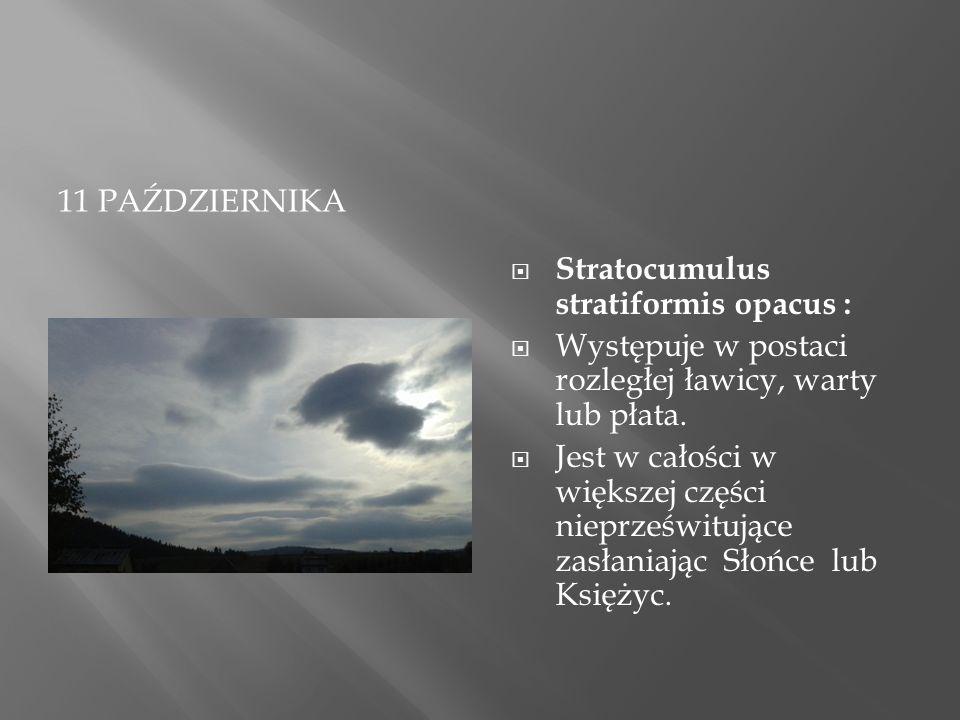 11 PAŹDZIERNIKA  Stratocumulus stratiformis opacus :  Występuje w postaci rozległej ławicy, warty lub płata.