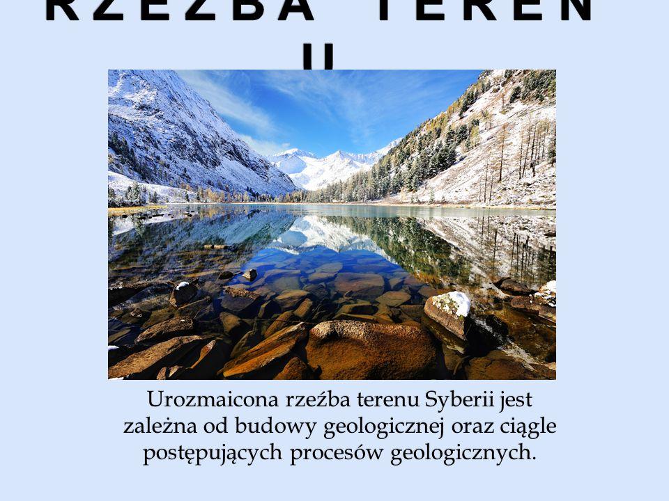 Urozmaicona rzeźba terenu Syberii jest zależna od budowy geologicznej oraz ciągle postępujących procesów geologicznych.
