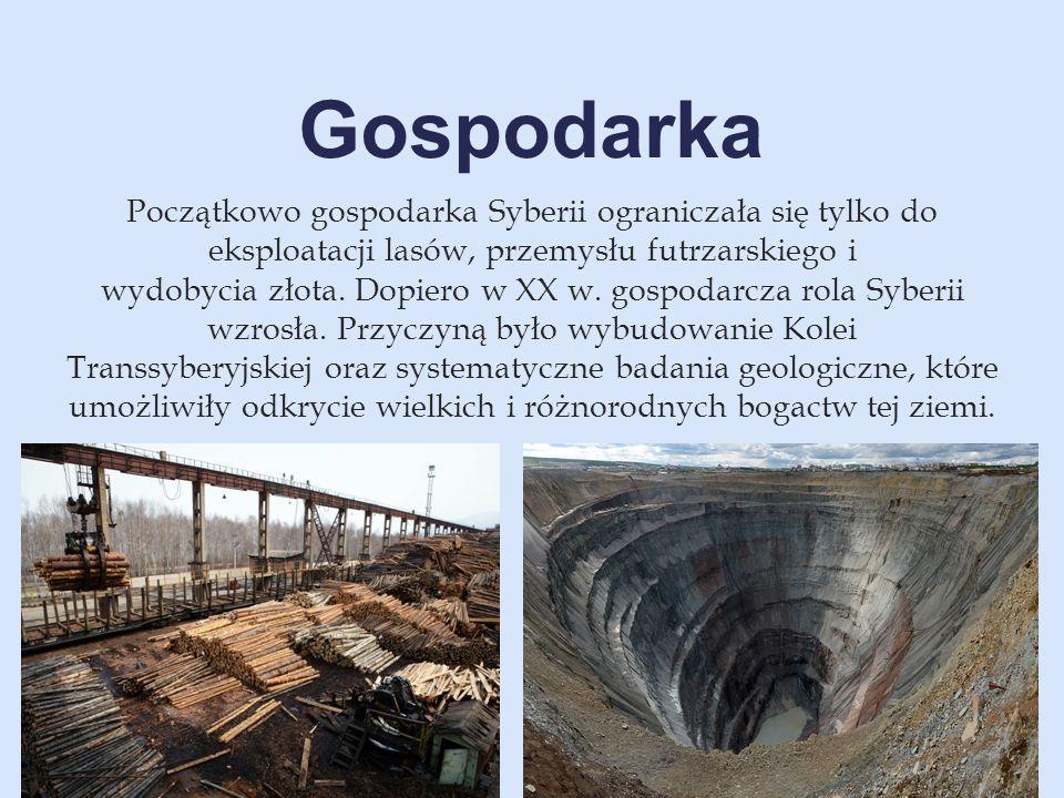 Początkowo gospodarka Syberii ograniczała się tylko do eksploatacji lasów, przemysłu futrzarskiego i wydobycia złota. Dopiero w XX w. gospodarcza rola