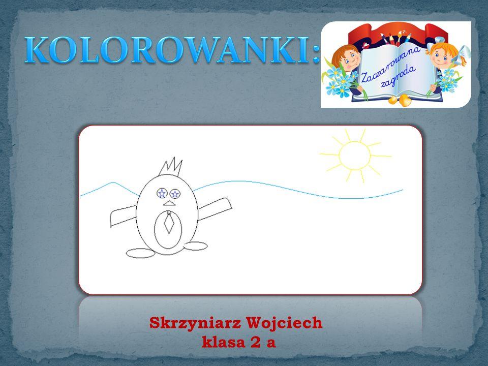 Skrzyniarz Wojciech klasa 2 a