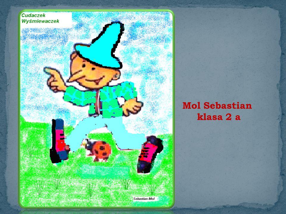 Mol Sebastian klasa 2 a