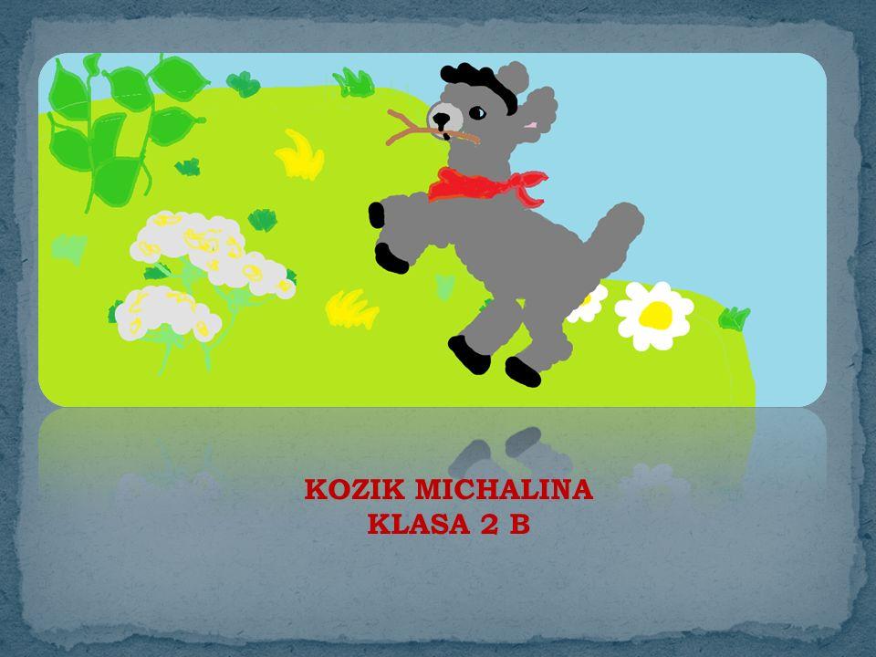 KOZIK MICHALINA KLASA 2 B