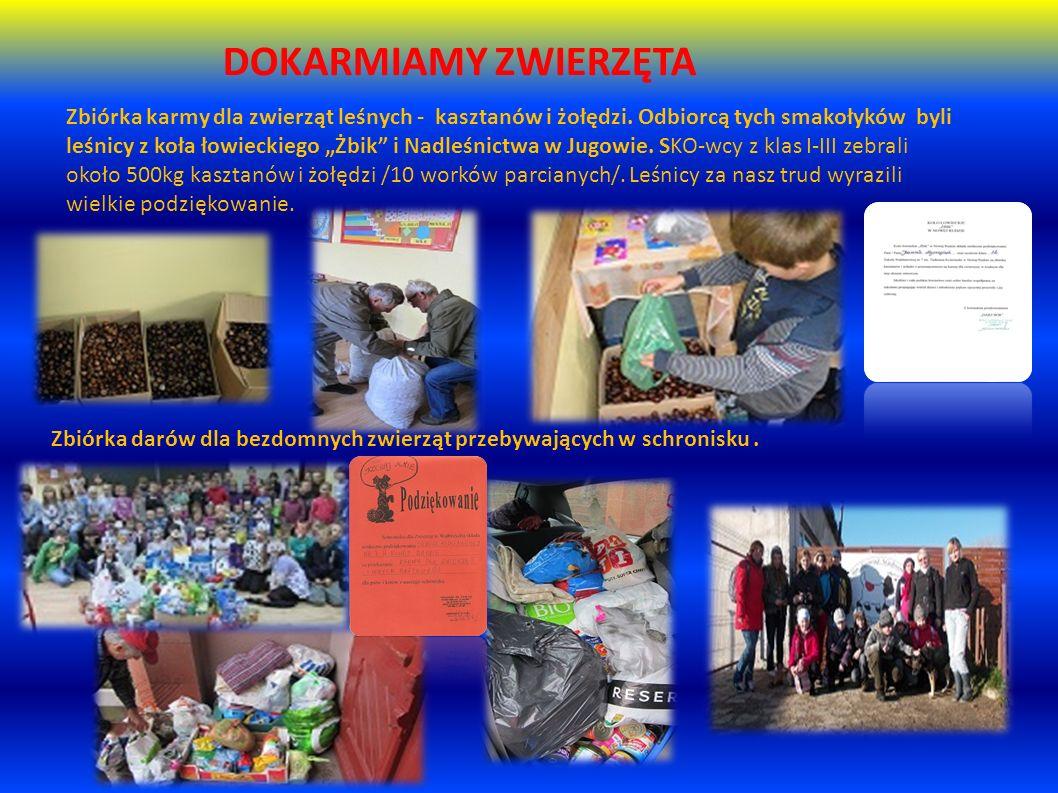 DOKARMIAMY ZWIERZĘTA Zbiórka karmy dla zwierząt leśnych - kasztanów i żołędzi.