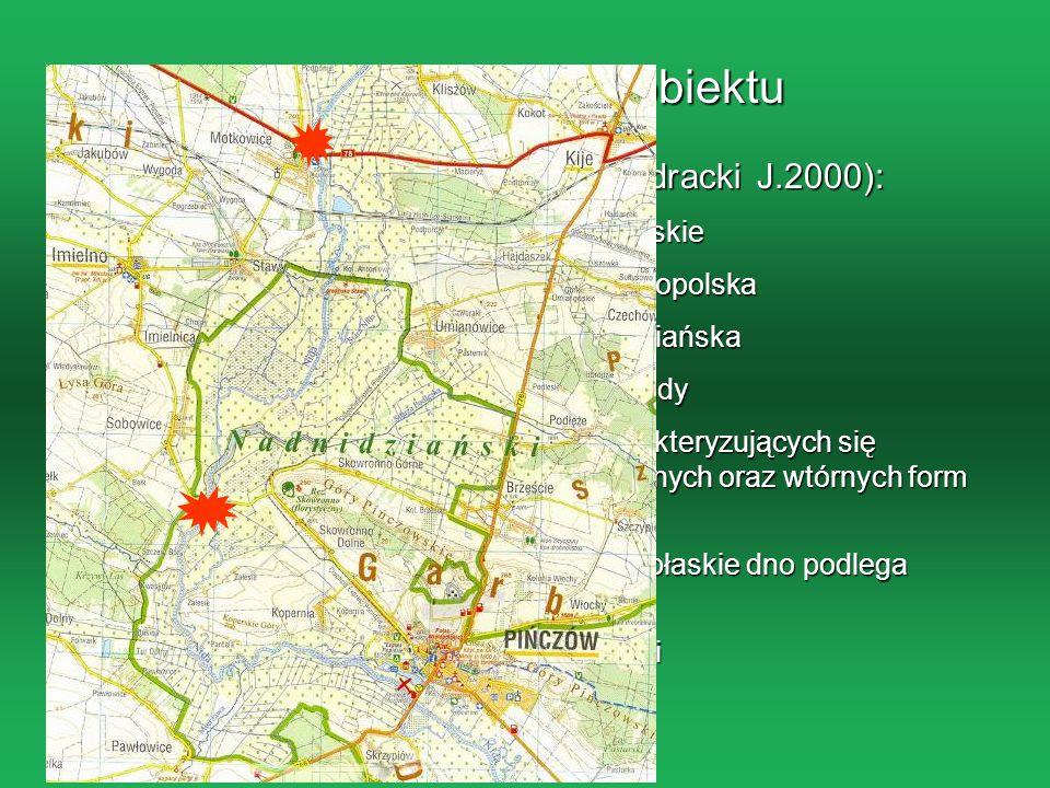 Charakterystyka obiektu Klasyfikacja fizyczno-geograficzna(Kondracki J.2000): Prowincja: Wyżyny Polskie Podprowincja: Wyżyna Małopolska Makroregion: N