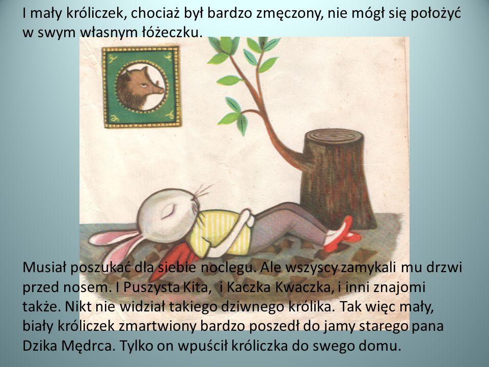 I mały króliczek, chociaż był bardzo zmęczony, nie mógł się położyć w swym własnym łóżeczku. Musiał poszukać dla siebie noclegu. Ale wszyscy zamykali