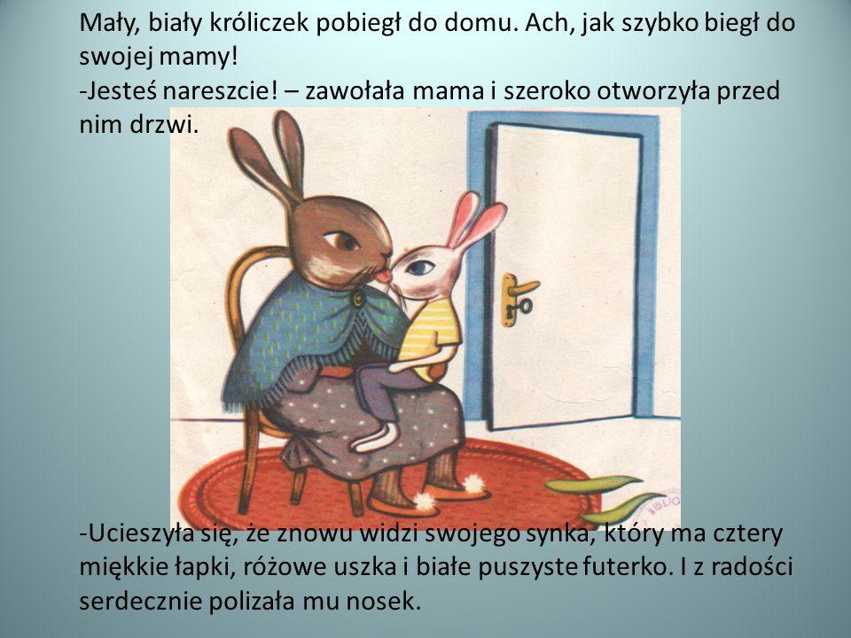 Mały, biały króliczek pobiegł do domu. Ach, jak szybko biegł do swojej mamy! -Jesteś nareszcie! – zawołała mama i szeroko otworzyła przed nim drzwi. -