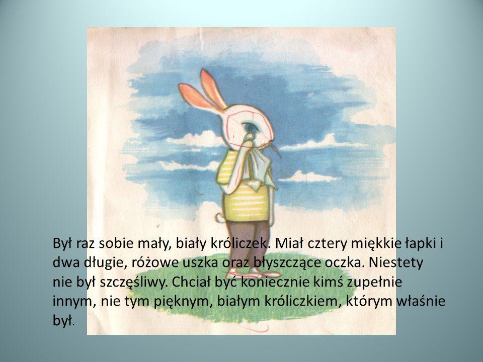 Był raz sobie mały, biały króliczek. Miał cztery miękkie łapki i dwa długie, różowe uszka oraz błyszczące oczka. Niestety nie był szczęśliwy. Chciał b