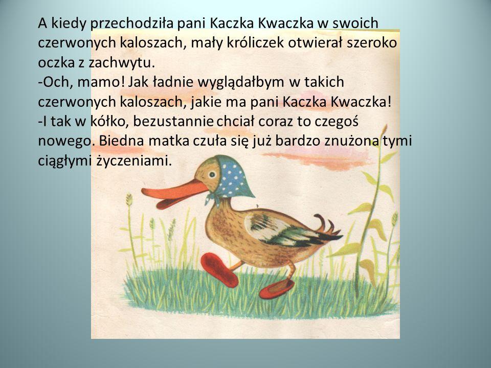 A kiedy przechodziła pani Kaczka Kwaczka w swoich czerwonych kaloszach, mały króliczek otwierał szeroko oczka z zachwytu.