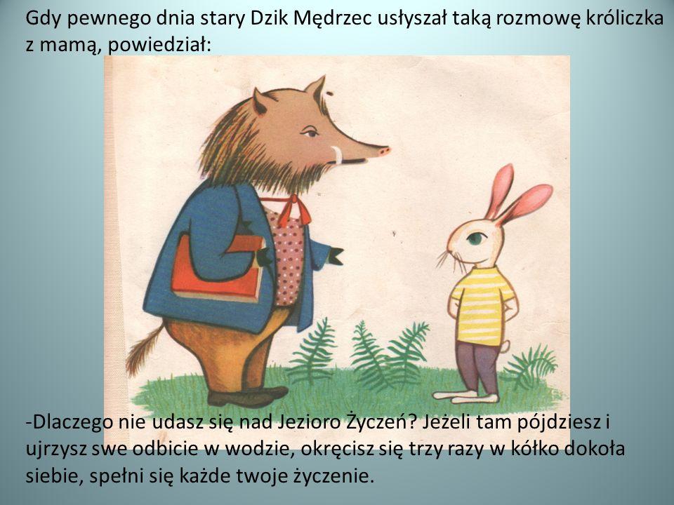 Gdy pewnego dnia stary Dzik Mędrzec usłyszał taką rozmowę króliczka z mamą, powiedział: -Dlaczego nie udasz się nad Jezioro Życzeń? Jeżeli tam pójdzie