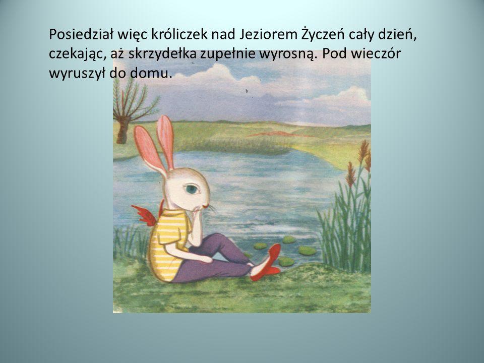 Posiedział więc króliczek nad Jeziorem Życzeń cały dzień, czekając, aż skrzydełka zupełnie wyrosną. Pod wieczór wyruszył do domu.