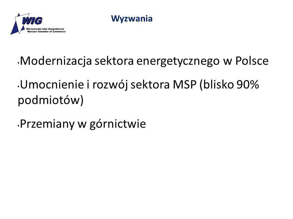 Modernizacja sektora energetycznego w Polsce Umocnienie i rozwój sektora MSP (blisko 90% podmiotów) Przemiany w górnictwie Wyzwania