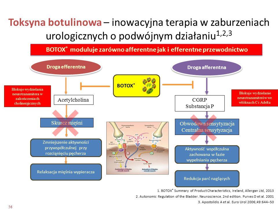Skurcz mięśni Obwodowa sensytyzacja Centralna sensytyzacja Droga efferentna Droga afferentna Zmniejszenie aktywności przywspółczulnej przy rozciąnięci