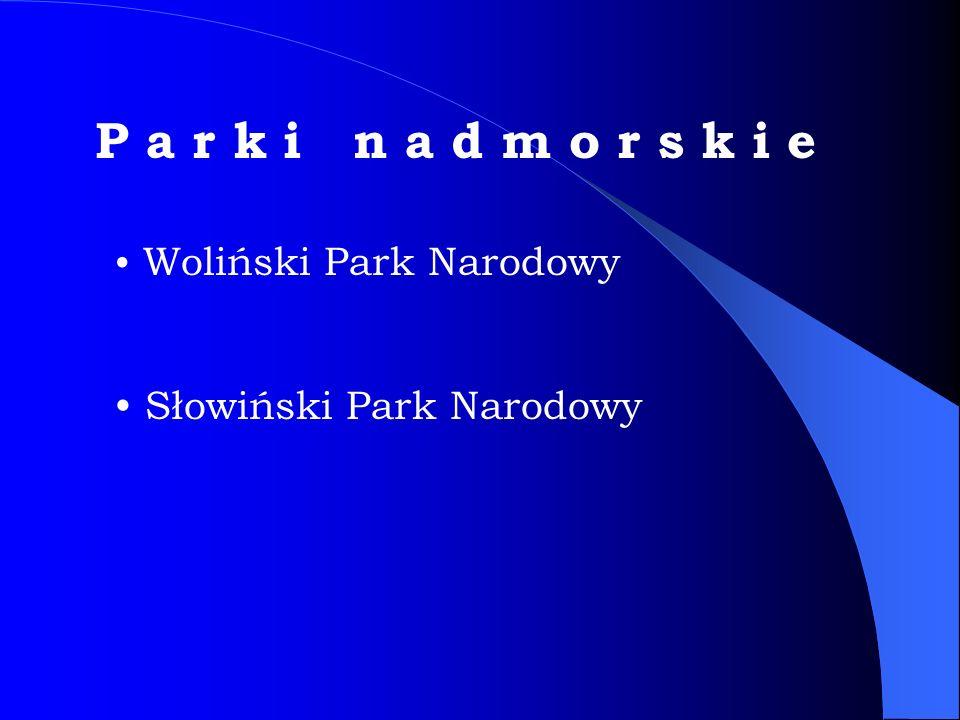 Pierwszy w Polsce Park morski.