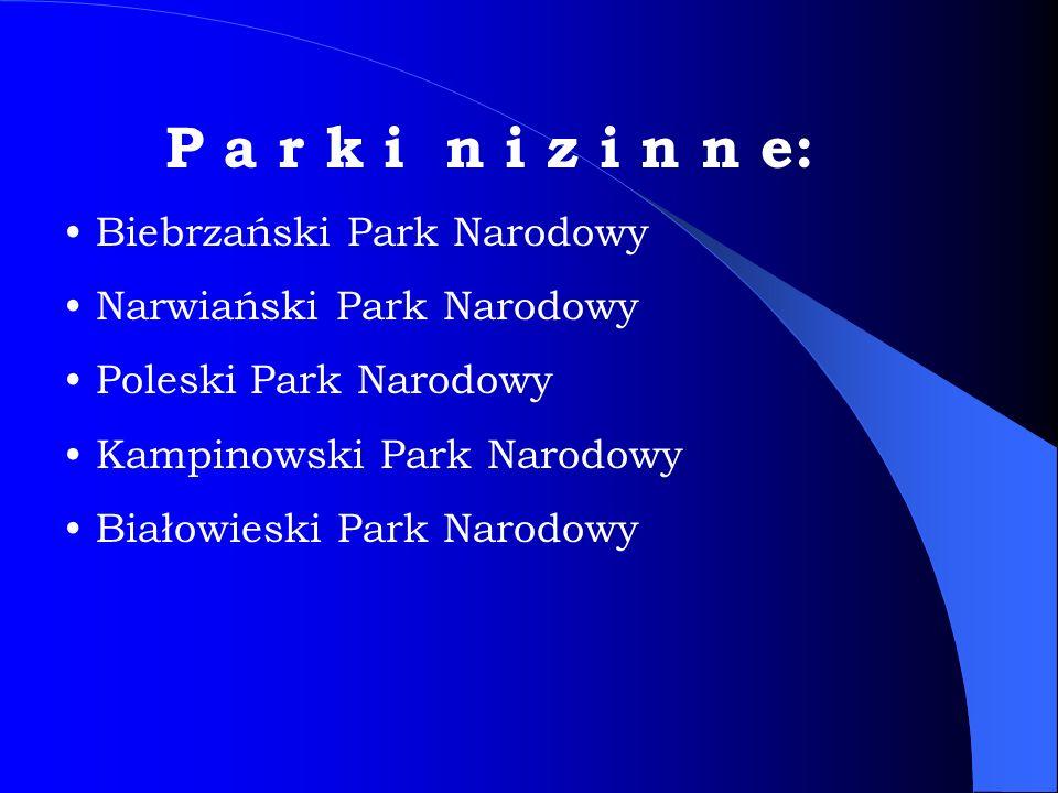 Trzeci co do wielkości park narodowy!!.