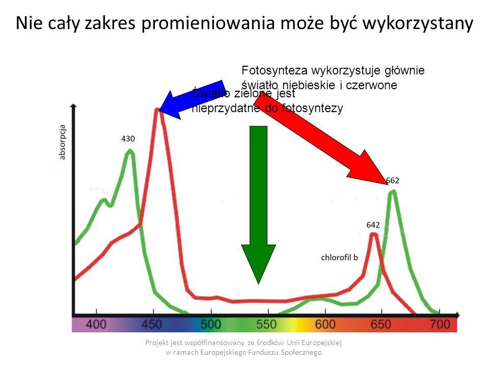 Nie cały zakres promieniowania może być wykorzystany Projekt jest współfinansowany ze środków Unii Europejskiej w ramach Europejskiego Funduszu Społecznego Fotosynteza wykorzystuje głównie światło niebieskie i czerwone Światło zielone jest nieprzydatne do fotosyntezy