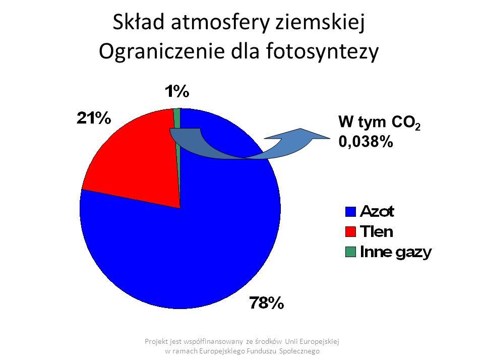 Skład atmosfery ziemskiej Ograniczenie dla fotosyntezy W tym CO 2 0,038% Projekt jest współfinansowany ze środków Unii Europejskiej w ramach Europejskiego Funduszu Społecznego