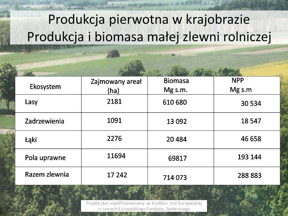 Produkcja pierwotna w krajobrazie Produkcja i biomasa małej zlewni rolniczej Projekt jest współfinansowany ze środków Unii Europejskiej w ramach Europejskiego Funduszu Społecznego