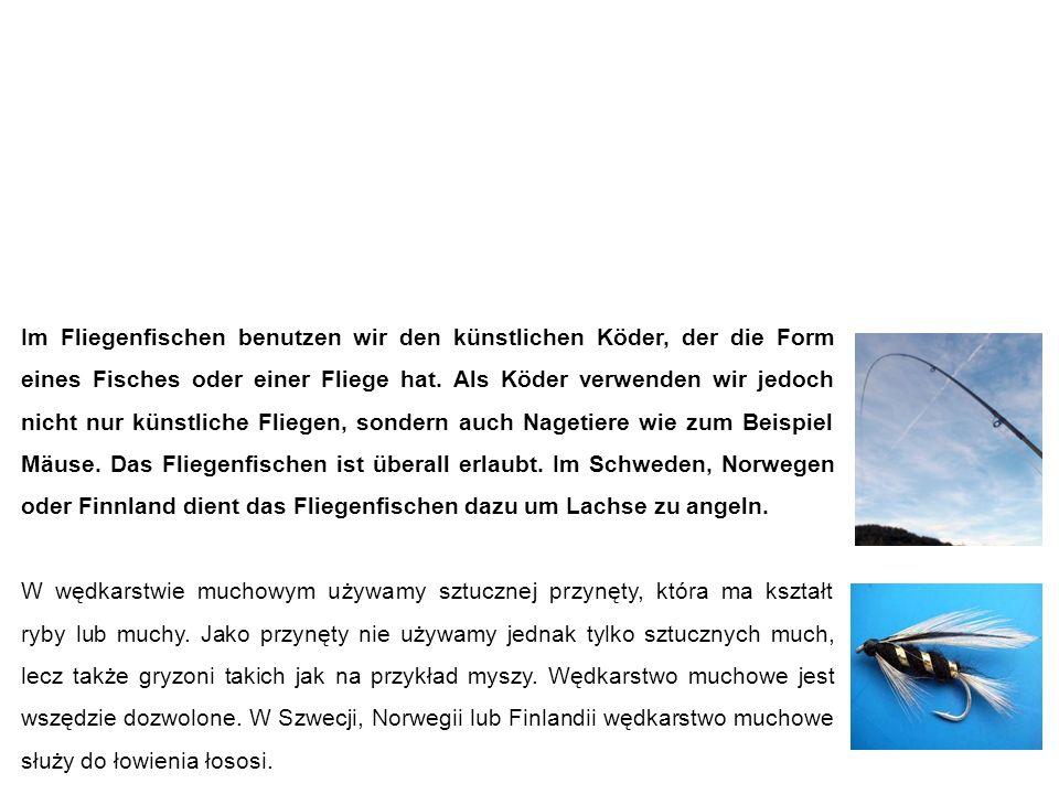 Fliegenfischen wędkarstwo muchowe Im Fliegenfischen benutzen wir den künstlichen Köder, der die Form eines Fisches oder einer Fliege hat.