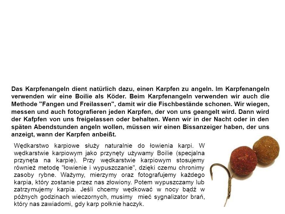 Karpfenangeln wędkarstwo karpiowe Das Karpfenangeln dient natürlich dazu, einen Karpfen zu angeln.