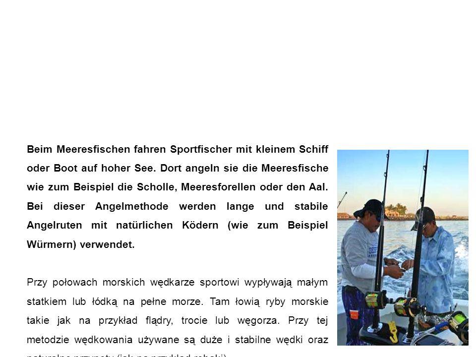 Meeresfischen łowienie na pełnym morzu Beim Meeresfischen fahren Sportfischer mit kleinem Schiff oder Boot auf hoher See.