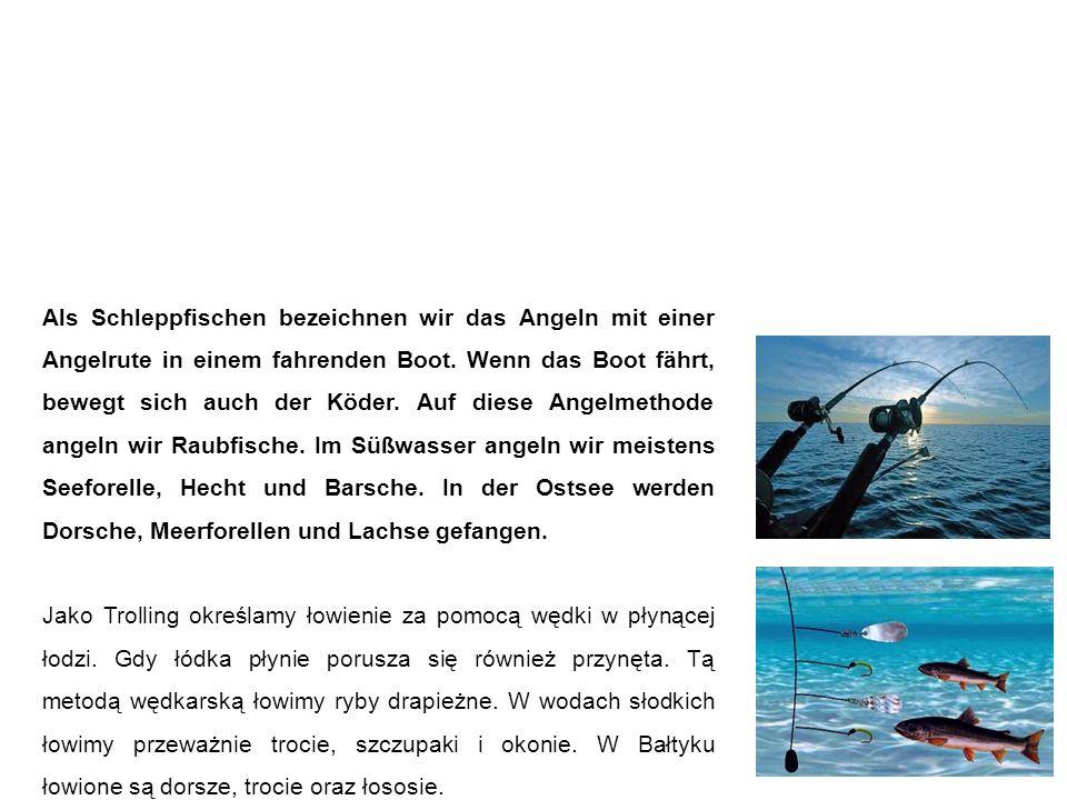 Schleppfischen trolling Als Schleppfischen bezeichnen wir das Angeln mit einer Angelrute in einem fahrenden Boot.