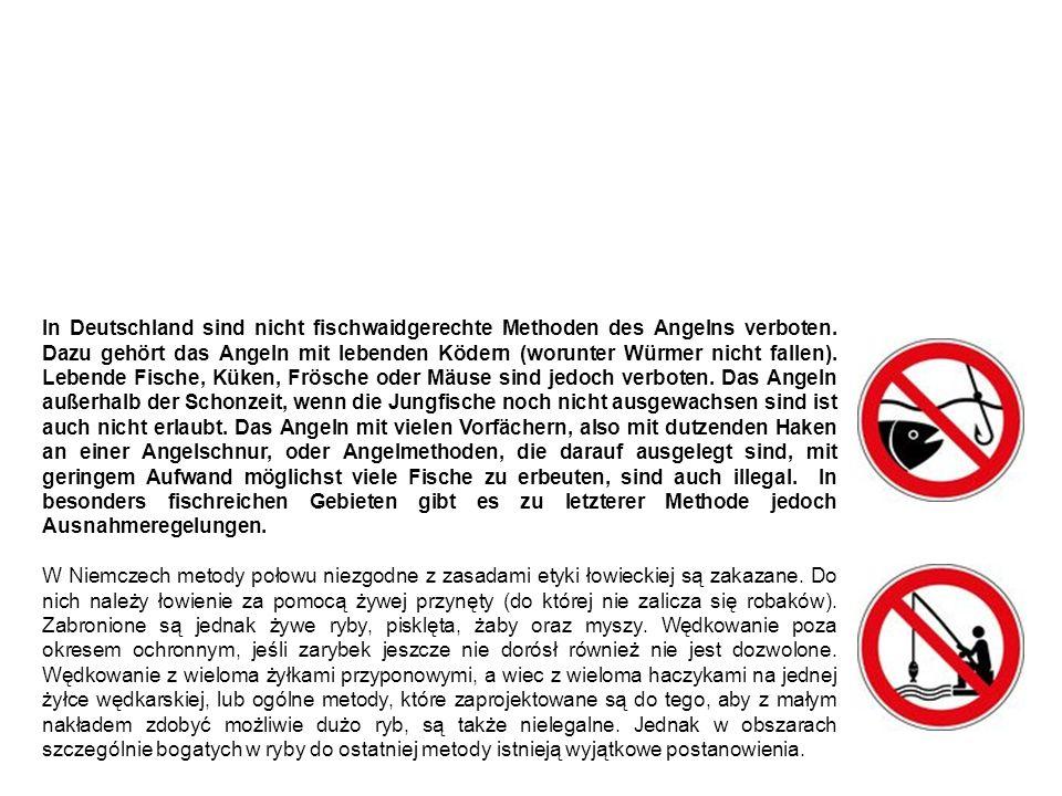 Nicht fischwaidgerechte Methoden metody połowu niezgodnie z zasadami etyki łowieckiej In Deutschland sind nicht fischwaidgerechte Methoden des Angelns verboten.