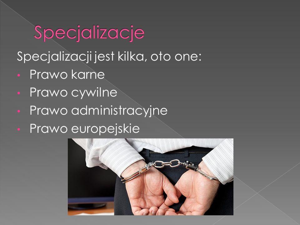 Specjalizacji jest kilka, oto one: Prawo karne Prawo cywilne Prawo administracyjne Prawo europejskie