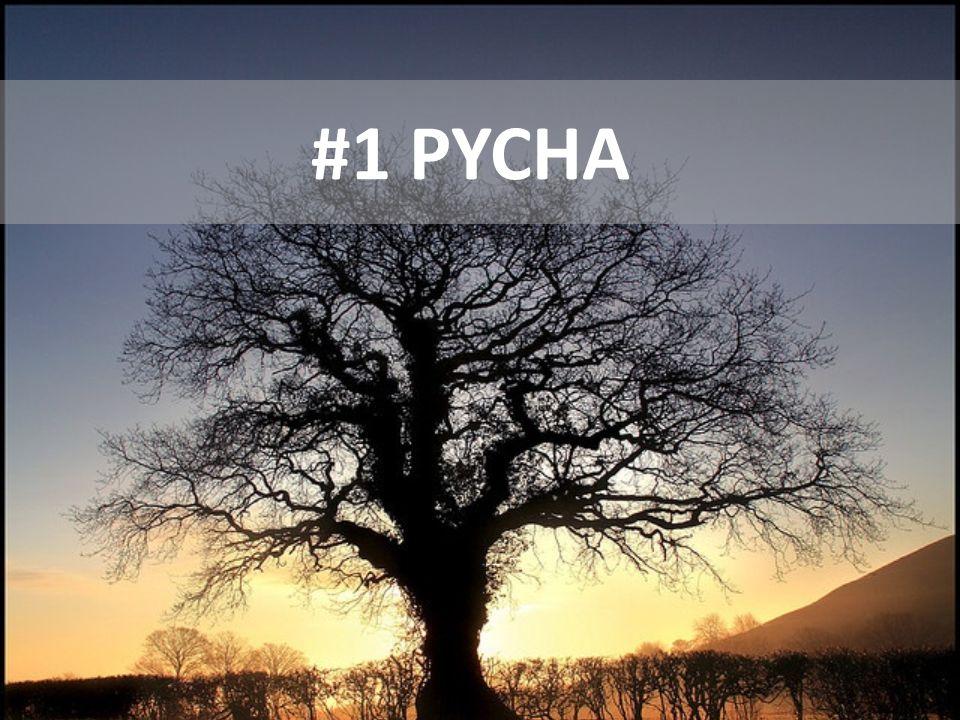 #1 PYCHA