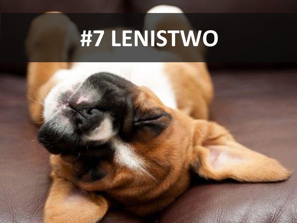 #7 LENISTWO